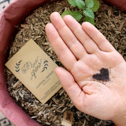 Semer des graines bio de fleurs pour son mariage