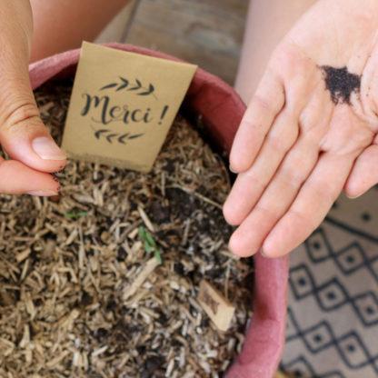 Semer des graines de fleurs en souvenir d'un mariage